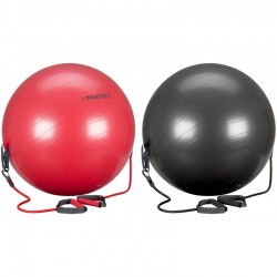 BALLON DE GYM 65 CM AVEC POIGNEES AMS - Artmartial-shop.fr