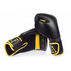 GANTS DE BOXE - 8 OZ AMS - Artmartial-shop.fr
