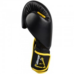 GANTS DE BOXE - 12 OZ AMS - Artmartial-shop.fr