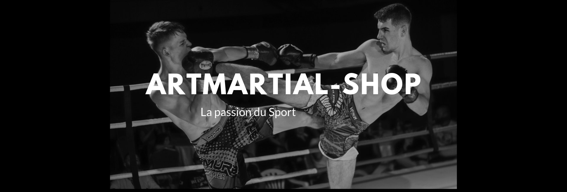 Art Martial Shop
